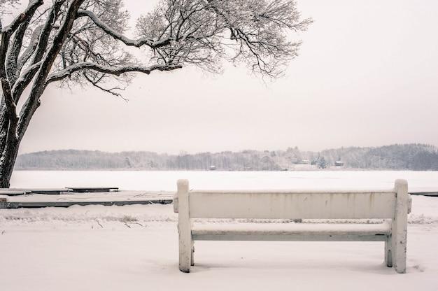 Wide shot van een bankje in een park bedekt met sneeuw naast een boom