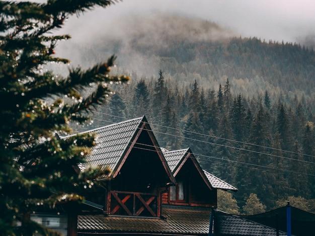 Wide shot van een bruin huis omgeven door een bos van sparren bomen onder wolken