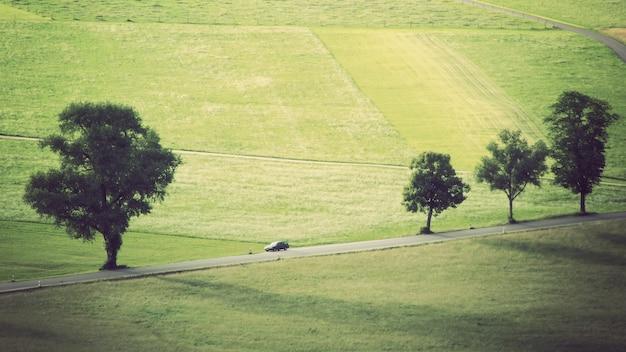 Wide shot van een weide met bomen en een auto rijden op het spoor
