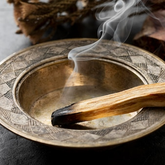 Wierook spaanse heilige hout plant close-up