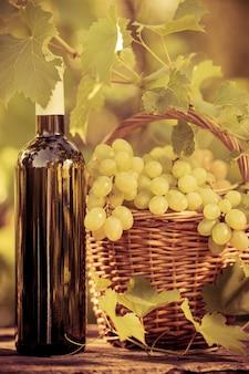 Wijnfles en druiven van wijnstok in de herfst