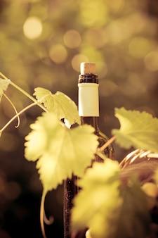 Wijnfles en wijnstok in de herfst