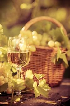 Wijnglas en druiven van wijnstok in de herfst