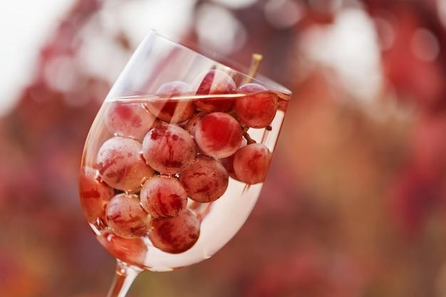 Wijnglas met wijn en een tros druiven binnen, tegen de achtergrond van rode wijngaarden