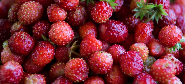 Wilde aardbeien. achtergrond.