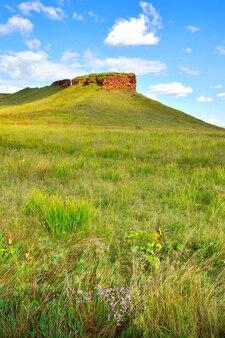 Wilde bloemen aan de voet van heuvels met een rode rotsklif in de zomer onder een blauwe bewolkte hemel. siberië, rusland