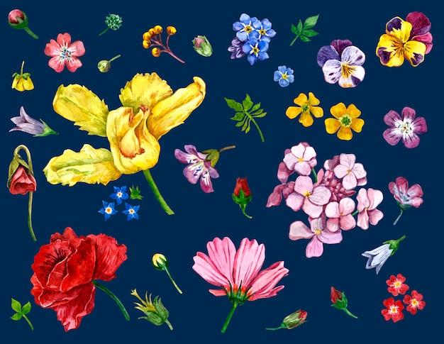 Wilde bloemen geschilderd in waterverf op donker