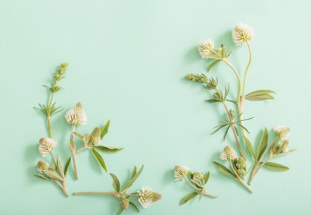 Wilde bloemen op groenboekoppervlak
