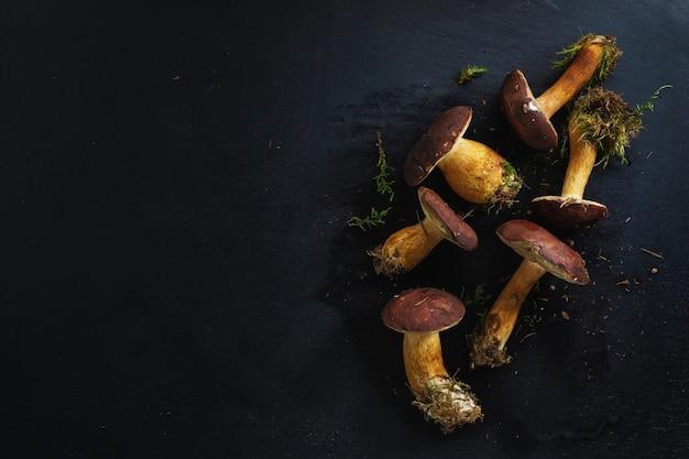 Wilde paddestoelen uit bos klaar om te koken op een donkere achtergrond. uitzicht van boven.