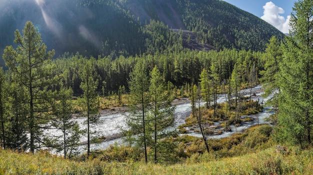 Wilde taiga rivier op een zomerochtend