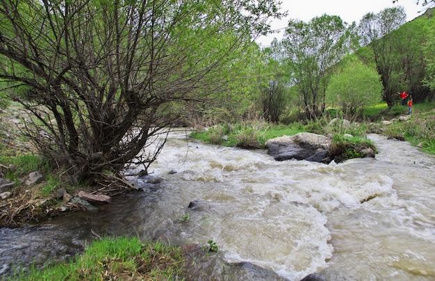 Wildlife in de bergen van de kaukasus, armenië