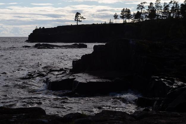 Wildlife van het valaam-natuurreservaat holy island rotsachtige kust dennen groeien op de klif