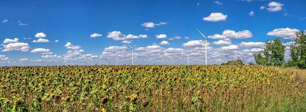 Windgeneratoren op een zonnebloemgebied tegen een bewolkte hemel