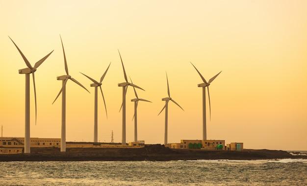Windmolenpark uitzicht naast de kust in fuerteventura