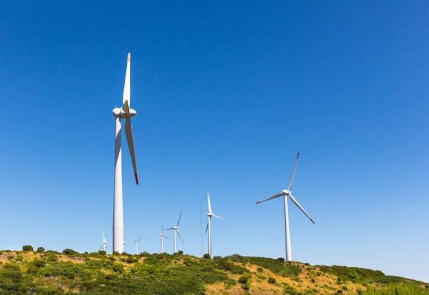 Windmolens in de vallei