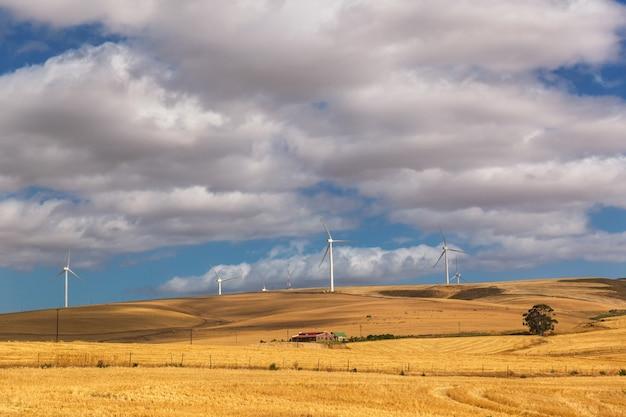 Windmolens op het platteland van zuid-afrika