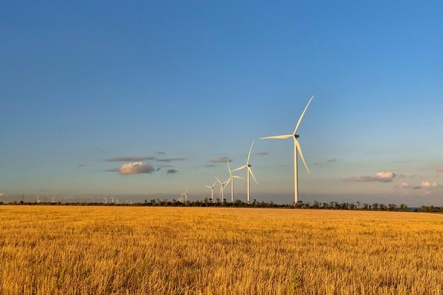 Windmolens tegen de avondrood op een geel veld