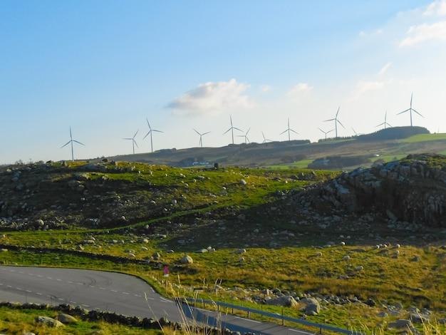 Windmolens voor de productie van elektriciteit. groen technologielandschap.
