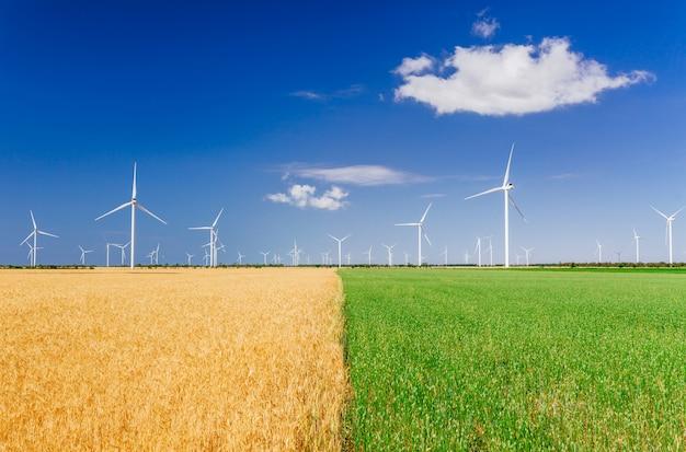 Windturbines die elektriciteit op gebied produceren. eco-energie, ecologie en wisselstroomconcept.