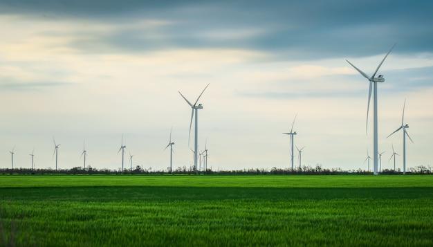 Windturbines die elektriciteit opwekken met blauwe lucht - energiebesparingsconcept