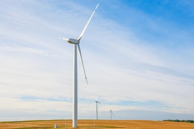 Windturbines die elektriciteit opwekken op geel veld