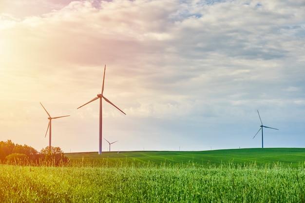 Windturbines in het veld in de zomer