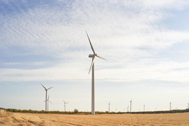 Windturbines. landschap bij zonsopgang met windmolens. hernieuwbare elektriciteitsbron. schone energie en technologieconcept.
