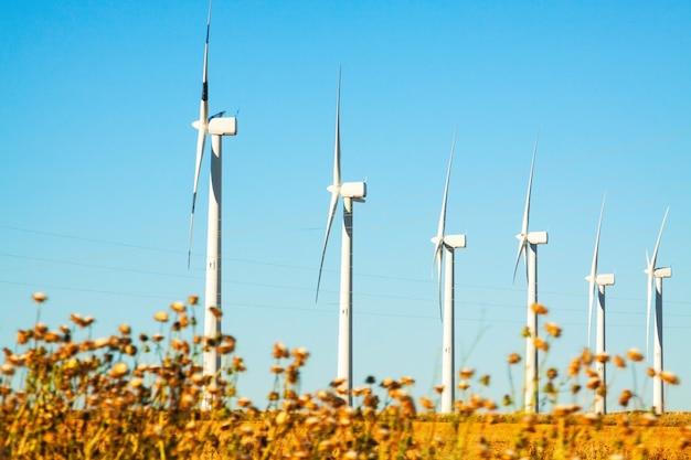 Windturbines op landbouwgrond