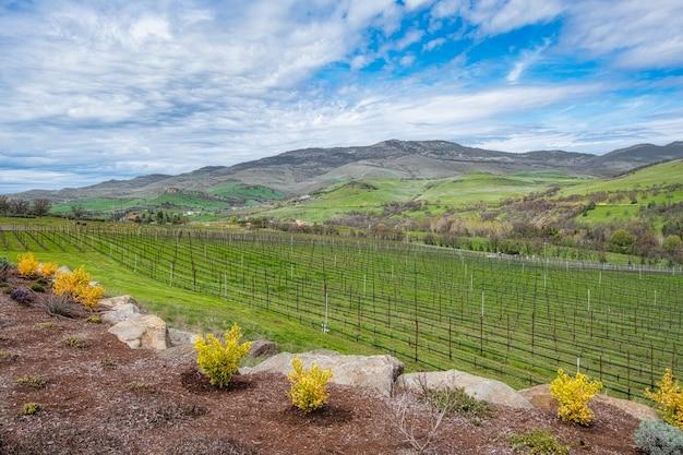 Winery uitzicht