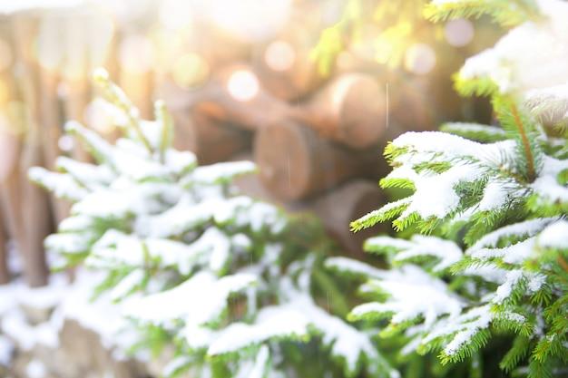 Winter achtergrond Gratis Foto