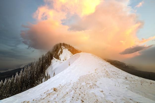 Winter berglandschap, besneeuwde toppen en vuren bomen onder bewolkte hemel op koude winterdag.