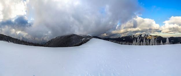 Winter berglandschap met besneeuwde pijnbomen en lage wolken