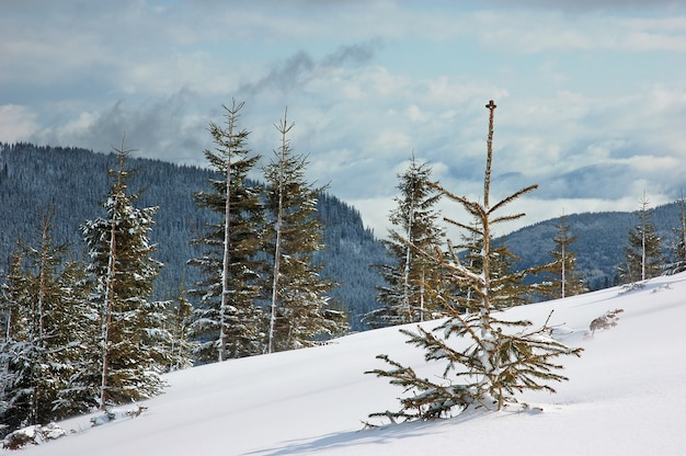 Winter berglandschap met besneeuwde weg bos heuvels sn