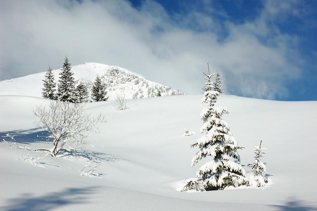 Winter berglandschap met besneeuwde weg bos heuvels sneeuw en blauwe hemel met wolken