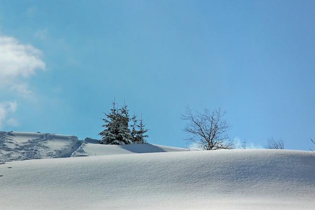 Winter berglandschap met sparren op helling wat dekking is