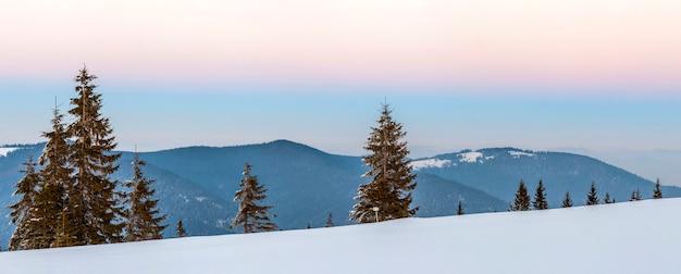 Winter besneeuwde landschap in bergen met pijnbomen en witte heuvels