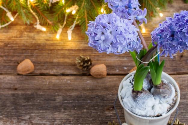 Winter blauwe hyacint met lichten bokeh op houten bakcground