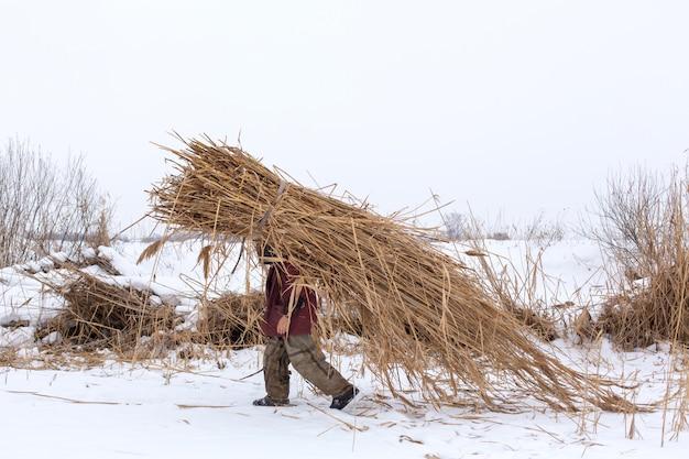 Winter. een man loopt door de sneeuw met een enorm pak droog riet op zijn rug