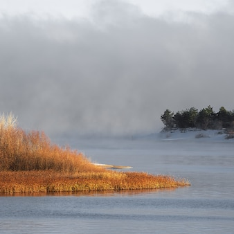 Winter ijzige mist op een niet-bevroren rivier