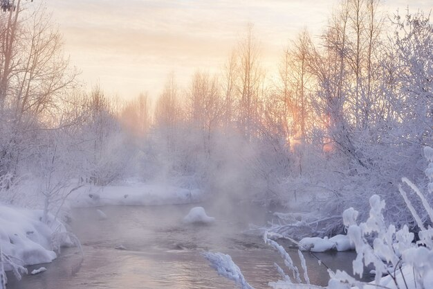 Winter ijzige ochtend aan de rivier, nevel en mist uit het water. zonlicht op een koude winterdag. struiken en bomen in de sneeuw. ruis, graan, onscherp
