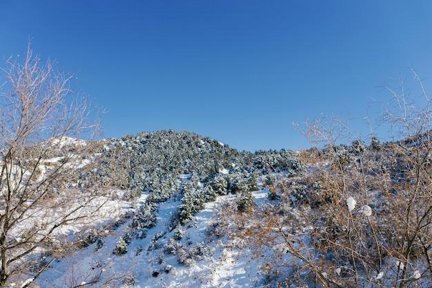Winter in de bergen van oezbekistan in the resort of beldersay