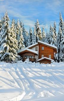 Winter mooie scène