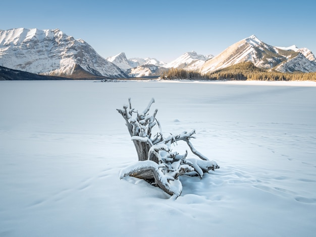 Winter op bevroren meer bedekt met sneeuw. geschoten bij kananaskis lake alberta canada
