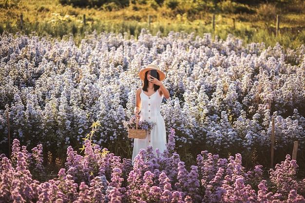 Winter reizen ontspannen vakantie concept, jonge gelukkig reiziger aziatische vrouw met mobiele telefoon sightseeing op margaret aster bloemen veld in de tuin in chiang mai, thailand