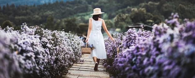 Winter reizen ontspannen vakantie concept, jonge gelukkige reiziger aziatische vrouw met jurk sightseeing op margaret aster bloemen veld in de tuin in chiang mai, thailand