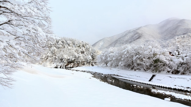 Winter shirakawa gaan