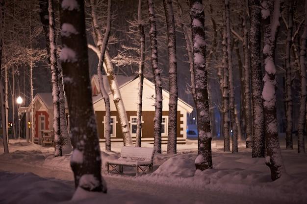 Winter sneeuw nacht park
