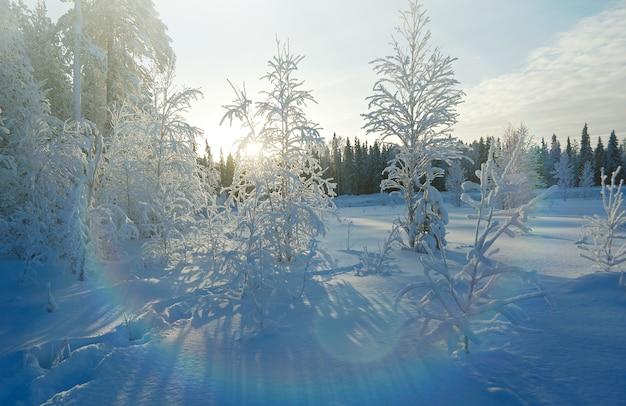 Winter sneeuwjacht landschap. winters tafereel