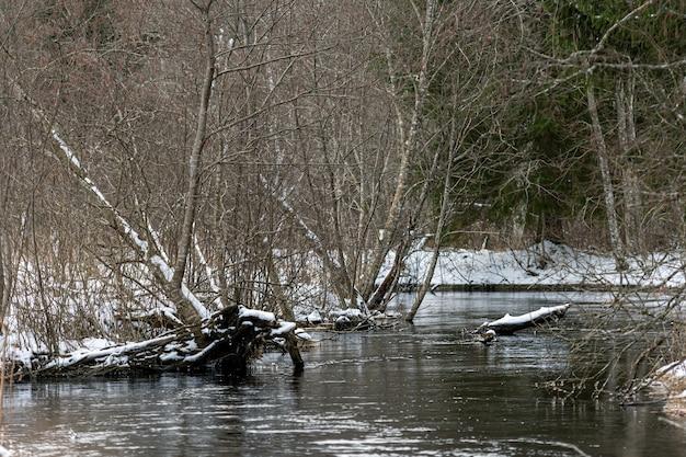 Winter uitzicht op kleine rivier, winterlandschap met bos rivier