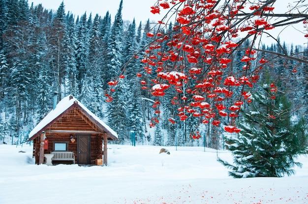 Winter vakantiehuis in het bos.